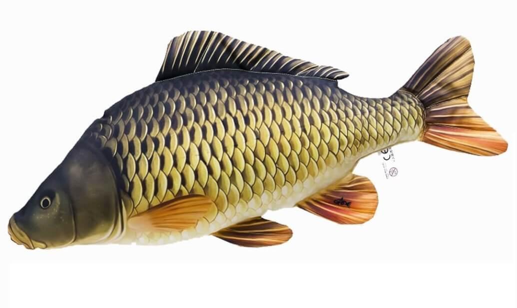 Rybářský dárek - polštář kapr
